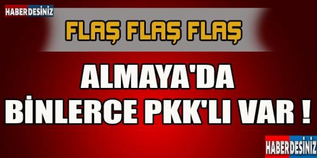 ALMAYA'DA BİNLERCE PKK'LI VAR !