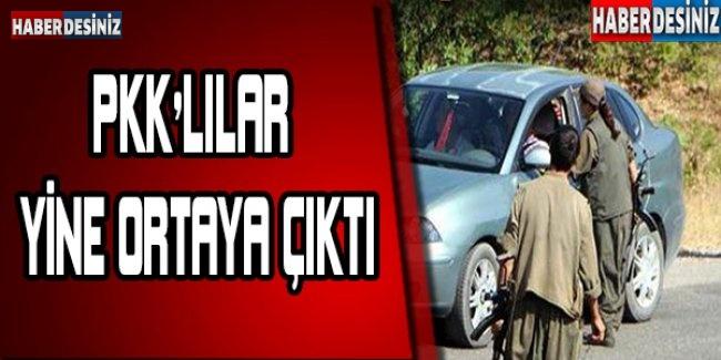 PKK'LILAR YİNE ORTAYA ÇIKTI