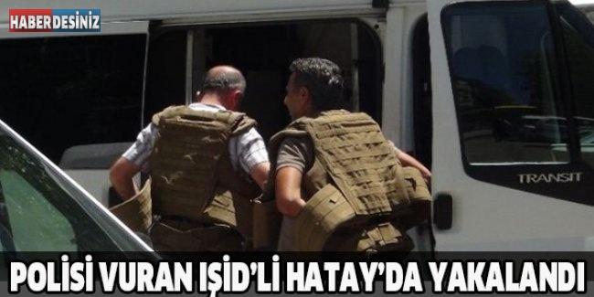 Polisi vuran IŞİD'li Hatay'da yakalandı