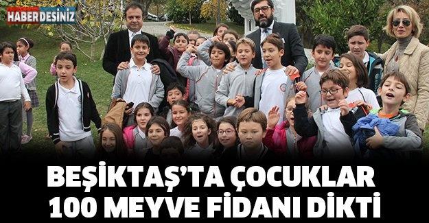Beşiktaş'ta çocuklar 100 meyve fidanı dikti