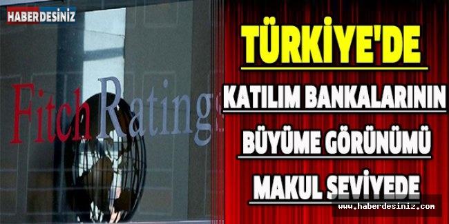 Türkiye'de katılım bankalarının büyüme görünümü makul seviyede