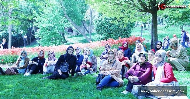 Emirgan Korusu'nda Tarihi Gezi