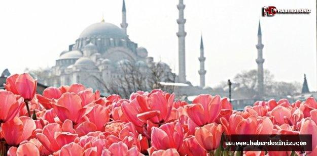 Laleler İstanbul'la Buluşuyor