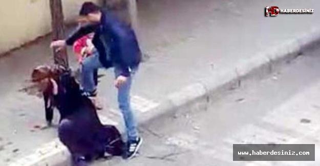 Eşini döven Emrah Ç.'nin ifadesi ortaya çıktı