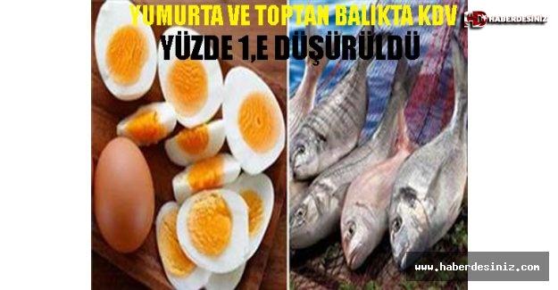 Yumurta ve toptan balıkta KDV yüzde 1'e düşürüldü
