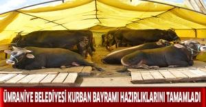 Ümraniye Belediyesi Kurban Bayramı Hazırlıklarını Tamamladı