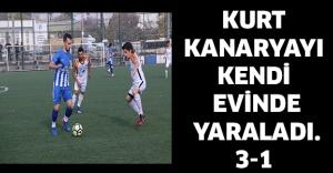 KURT KANARYAYI KENDİ EVİNDE YARALADI.3-1
