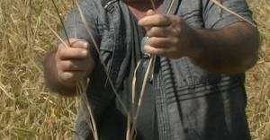 Çiftçiler İçin Müjde: Akıllı Gübre İle İki Kat Hasat
