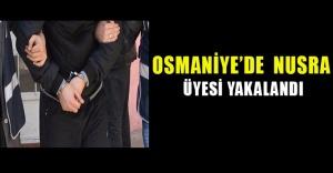 Osmaniye'de Nusra üyesi yakalandı