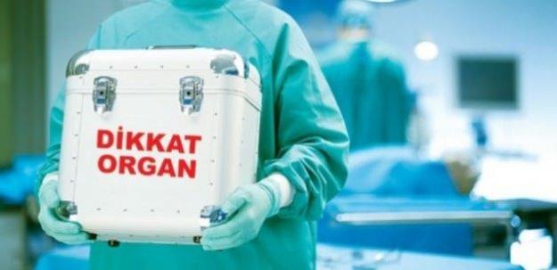 Türkiye'de 60 bin kişi organ bekliyor