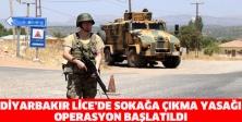 Diyarbakır Lice'de sokağa çıkma yasağı: Operasyon başlatıldı