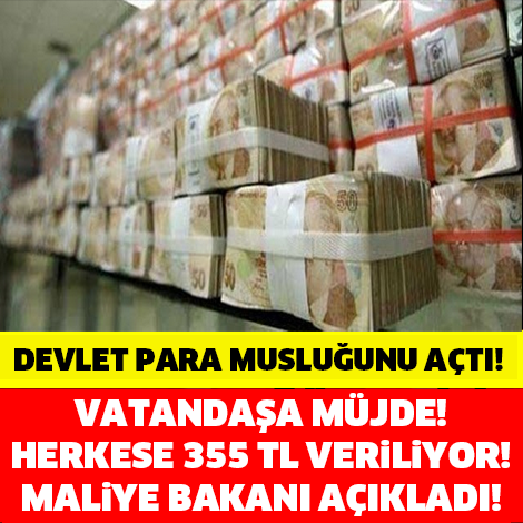 Maliye bakanı açıkladı! Milyonlarca vatandaşa müjde! Herkese tamı tamına 355 tl veriliyor!