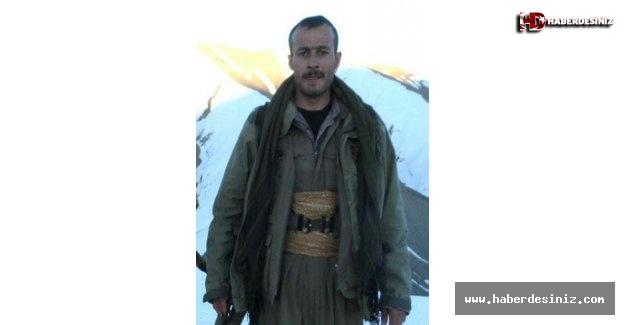 300 bin TL ödülle aranan PKK'nın Artos kod adlı bombacısı öldürüldü.