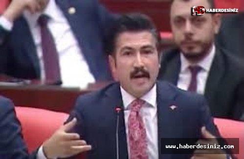 AKP'li vekil, Erdoğan'ın 'termik' vetosunu 'kuvvetler ayrılığı'na bağladı
