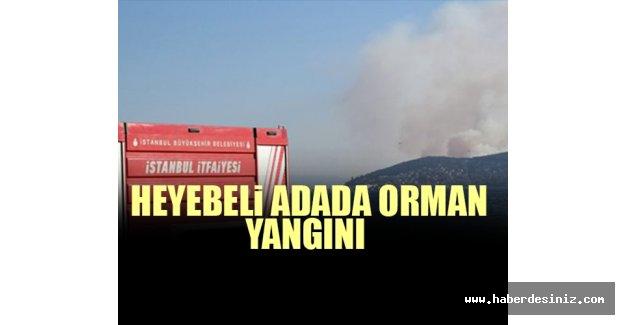 Heybeliada'daki orman yangınına ilişkin bir kişi tutuklandı