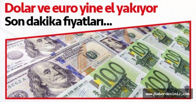 13 Ağustos Perşembe döviz fiyatları | Dolar kaç lira? Euro kaç lira?