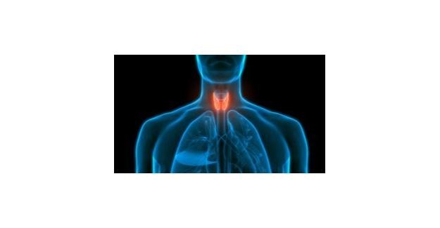 Tiroid kanseri boyunda ele gelen şişlikle belirti verebilir!