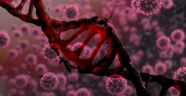 Covid-19, en uzun corona hastasında 40 kez mutasyona uğradı
