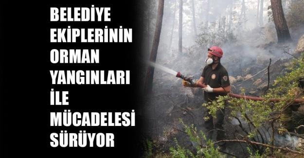 Orman yangınları mücadelesi hala sürüyor