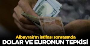 Berat Albayrak'ın istifası sonrası dolar ve euro kaç lira? 9 Kasım döviz fiyatları
