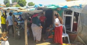 Sinan Karaca Öztürk: Romanlar Hindistan kökenli bir topluluktur