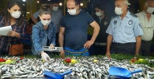 Balık alırken boyuna bakın